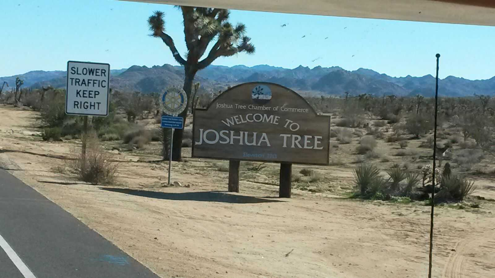 original_Joshua-Tree